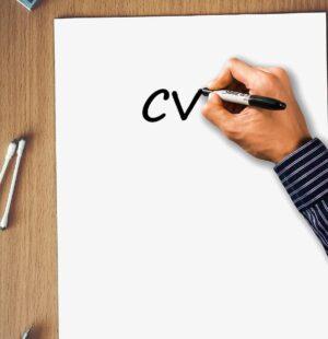 1113 CV Preparation - Basic - Essentials