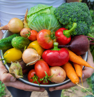Growing Vegetables - Level 4