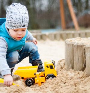 Child Development - Online - Level 5